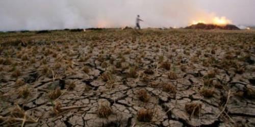 pakistan,inde,environnement,afrique,pauvreté,cyclones,sécheresse,sécurité alimentaire,réchauffement climatique,asie,alimentation,crise alimentaire,banque mondiale,climat,jim yong kim